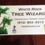 TreeWizardsYardSign